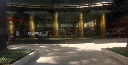 Capella Gallery Hall - 24, �ư�ng 3/2, P. 12, Q